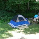 """A turtle on our hike, our camping site in """"The Shire"""" & beautiful landscaping at """"The Lodge"""""""