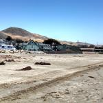 Foto de Cayucos Shoreline Inn...on the beach