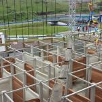 The view of the first level of the ropes course from where you start.