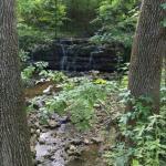 Spider Creek Resort Photo