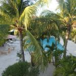Foto de Caribbean Paradise Inn