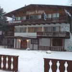 Foto de Alpine Lodge & Hotel