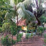 Photo de Coconut Cottages