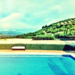 The pool surrounded by the mountains and olive trees