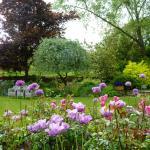 Garden in springtime