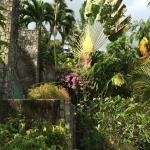 Foto de Patong Cottage Resort
