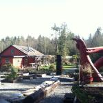 The Ecolodge at the Tofino Botanical Gardens Foto