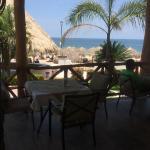 Foto de Tropicana Hotel