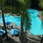 Room of pool view 1
