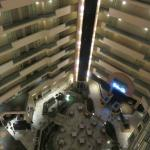Atrium view from inside.