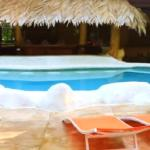 PURA VIDA! Come enjoy the pool and tropical sun