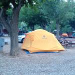 Tent Site 103