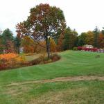 Fall colours right at your door