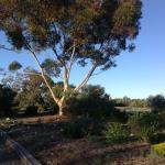 Set in an idyllic garden setting