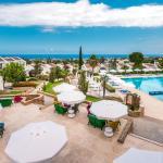 Фотография The Olive Tree Hotel