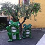 Frogs in the courtyard