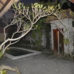 Foto de Nefatari Exclusive Villas