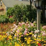 Allen Harbor Breeze Inn & Gardens Foto