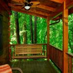Rugby Cabin Porch / View