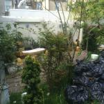 BIN BAGS IN GARDEN WITH PAINT POTS