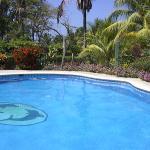 The pool at Mal Pais Surf Camp