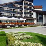 Foto di Hotel Breza