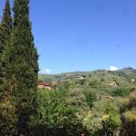 Wonderful view of Tessa's terrace.