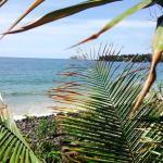 Foto de Majahua Hotel Selva