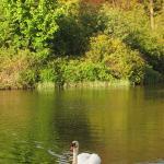 Doxford Lake