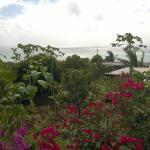 vue de notre terrasse privée