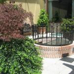 Detalle del patio