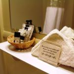 Double room: toiletries in bathroom