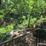 Tassajara Zen Mountain Center Foto
