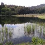 Doane Lake