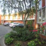 Schön bepflanzter Innenhof mit großen Parkplätzen an den Zimmern
