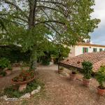 Bed and Breakfast Villa Nobili 22 the garden