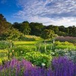 The Main Borders at RHS Garden Harlow Carr
