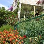 Photo de Guest House And Apartments Mediteran