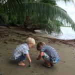 Kids playing on Danny's beach