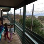 Foto de Shoreline Caravan Park