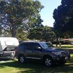 Bargara Beach Caravan Park Photo