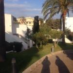 Landscape - Mar Hotels Ferrera Blanca Photo