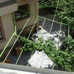호텔 다니시모의 사진