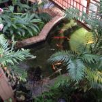 Royal Palm Plaza Resort Photo