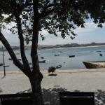 Foto de Ibis Porto Gaia