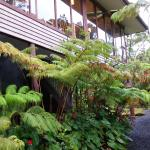 Foto de Volcano Inn