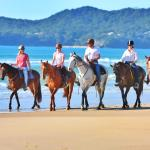 ‪Equathon Horse Riding Tours - Day Tours‬