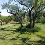 Azienda Agricola Augustali