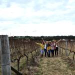 Imagen de Wine Discovery Tours