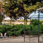 Vue de la terrasse/Hippodrome
